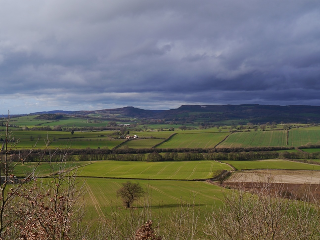 The Hambleton Hills from Beacon Banks
