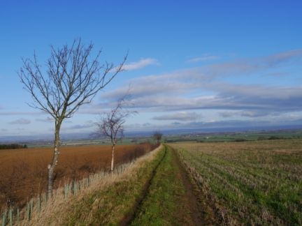 I enjoyed sweeping long distance views from Kirk Road