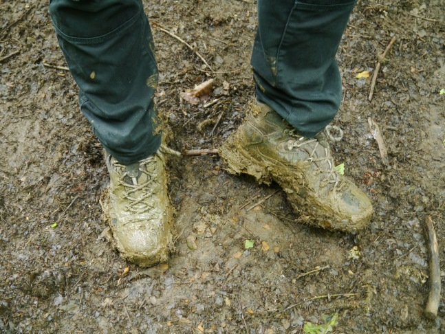 Just a short way into Oak Clff Wood and my boots were very muddy