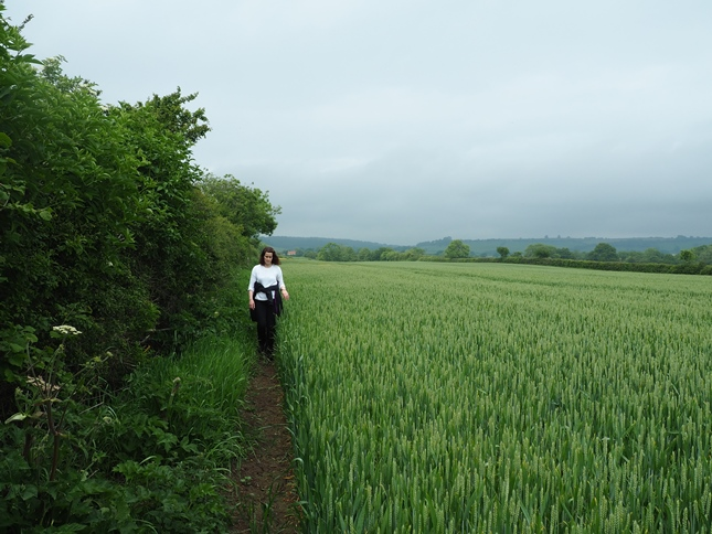 Lisa following the thin path alongside the wheatfield