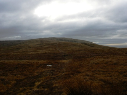 Looking south to Blease Fell from near the 411m spot height