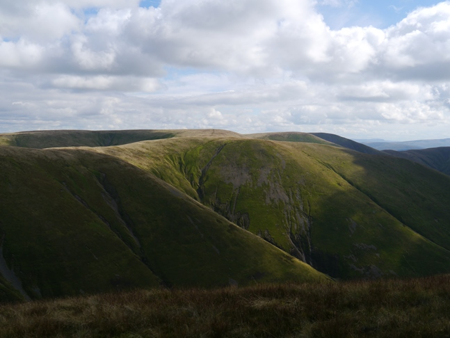 The Calf from Fell Head