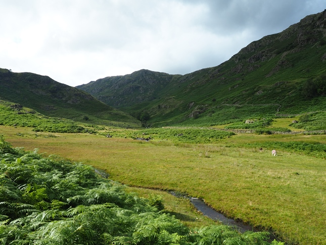 Calf Crag and Far Easedale