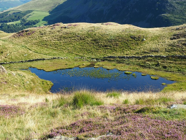 One of a couple of small tarns we passed