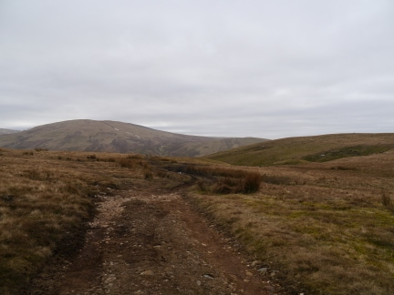 The track leading from Cold Fell Road towards Lank Rigg