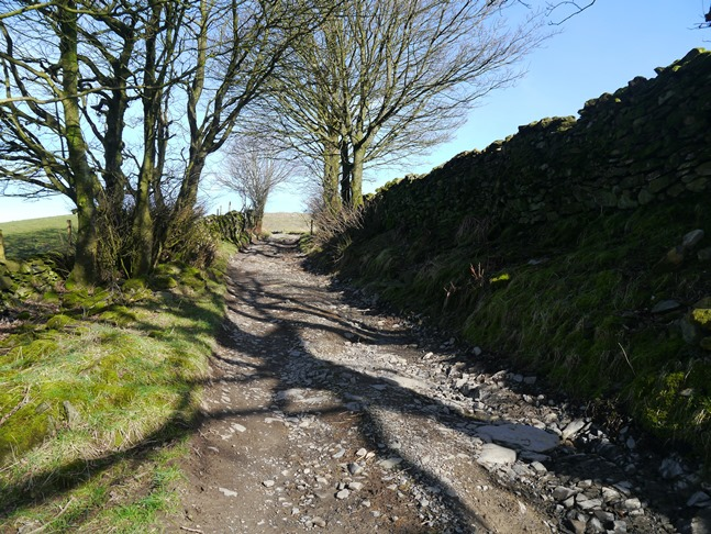 The stony lane leading from Mosergh to the open fellside