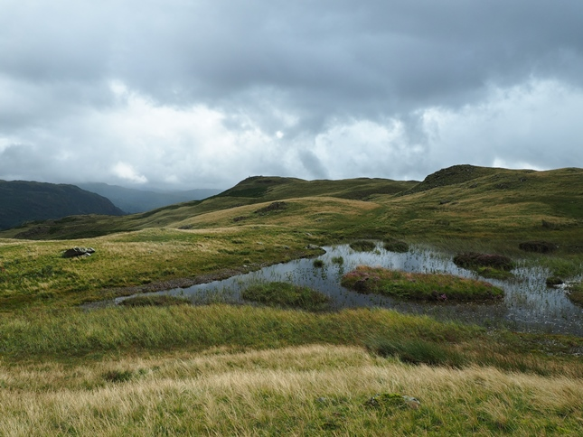 Another view of Silver How from the tarn below Lang How