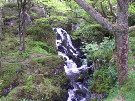 One of the attractive waterfalls in Ashness Wood