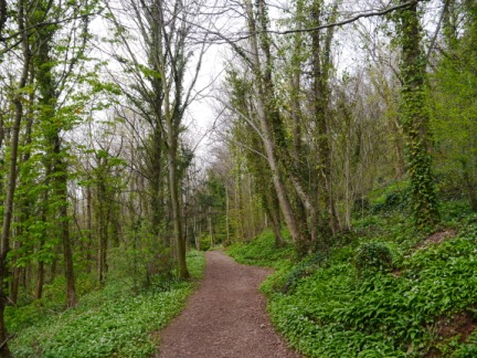 The path along the bottom of Marl Hall Woods