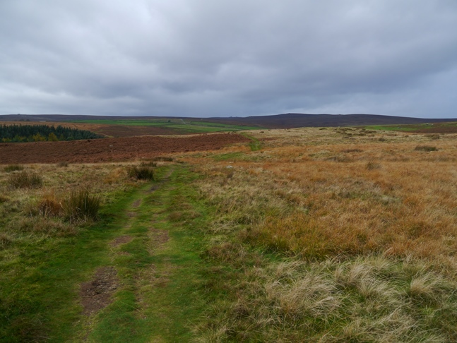 The moorland path above the reservoir looking towards Great Pockstones