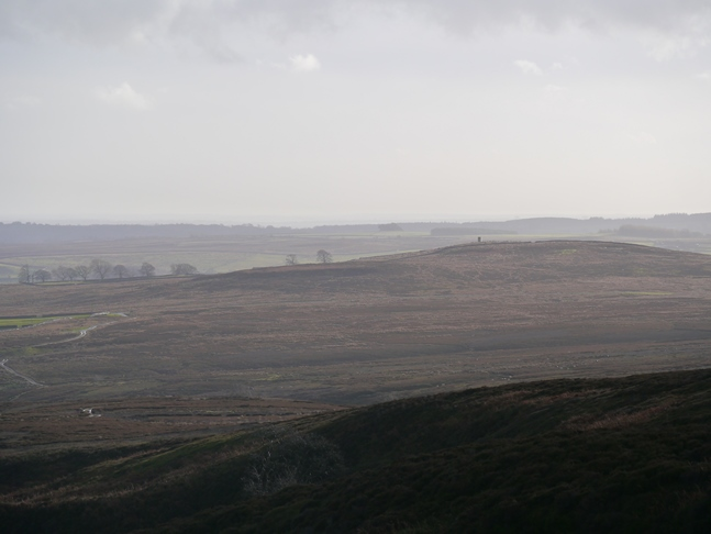 Swetton Moor and Greygarth Hill from the stone shelter