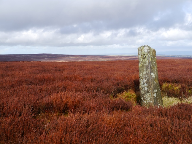 The boundary stone to the south of North Cross