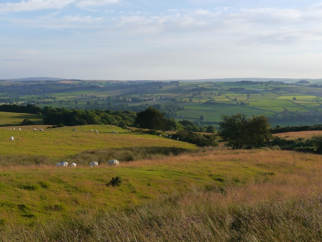The lovely view of Nidderdale from New York Lane