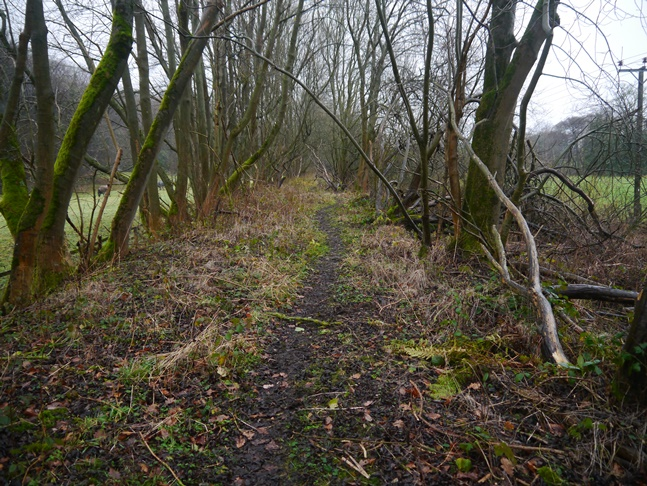 The thin path along the old railway line