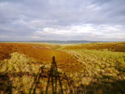 Another view of Pateley Moor