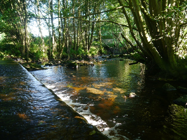 The River Burn by the parking area at Gollinglith Foot