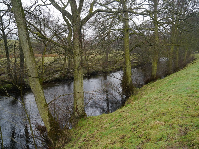 The River Nidd above Wath