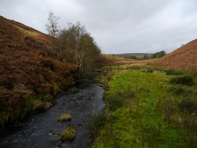 The River Washburn at the point it flows off the moor and in to the environs of the reservoir