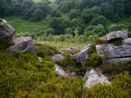 Looking down into Skell Gill from High Huller Stones