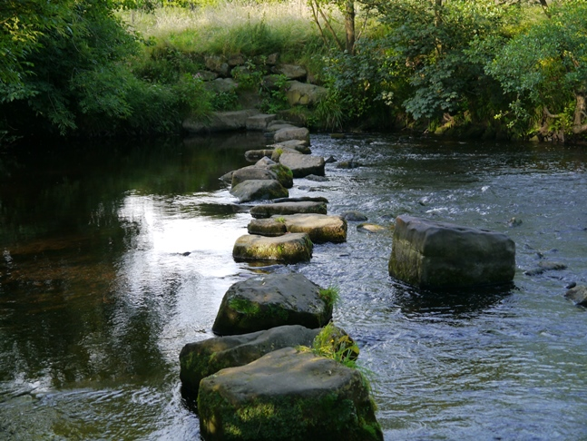 The stepping stones didn't look very practical - note the middle stone