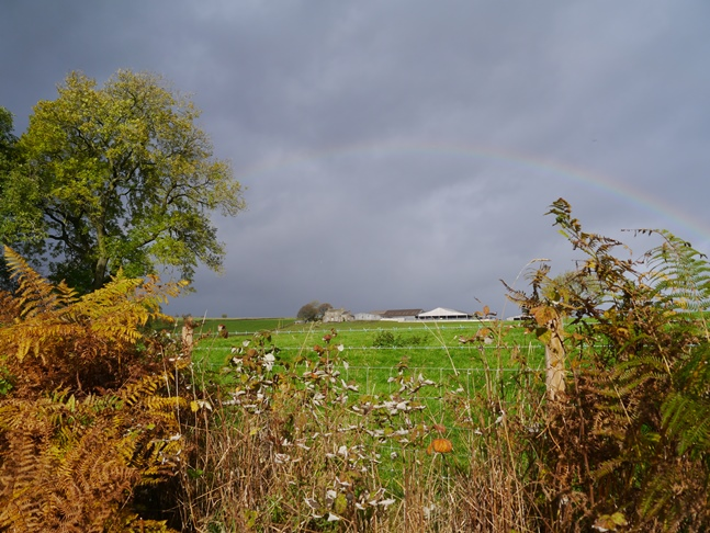 A rainbow over Whitmoor Farm