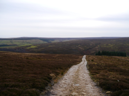 The shooting track leading down into the valley of Beldon Burn