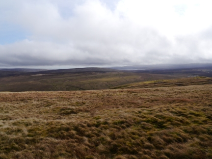 Looking south east over Bellbeaver Rigg towards Cow Green Reservoir