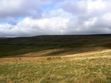 Looking back up to Bolt's Law