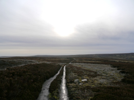 Heading south over Blanchland Moor on the Carrier's Way