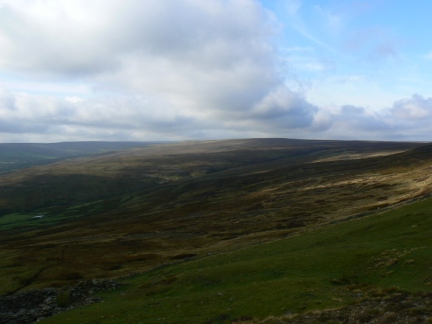 Dry Rigg from Bolt's Law