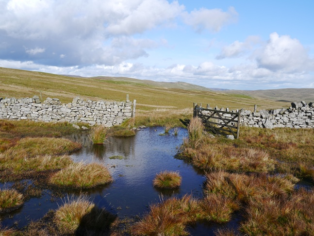 The bridleway went through this waterlogged gateway - I didn't