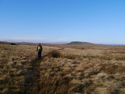 Heading across the moors towards Goldsborough from How Beck Head