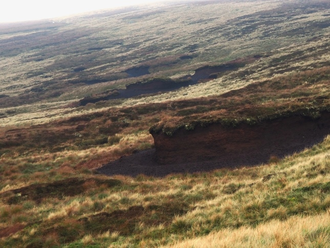 Above Carr Crags was a remarkable line of eroded peat which I dubbed 'Hag Crags'