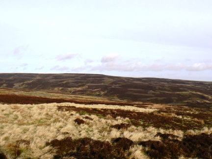 Harnisha Hill from Monk's Moor