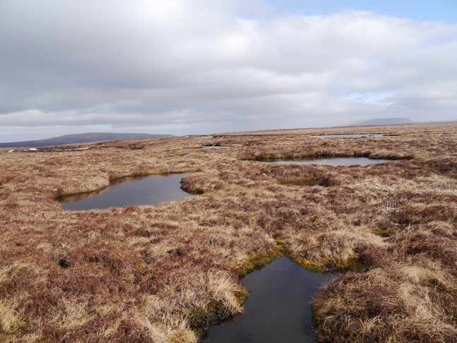 An area of miniature tarns between Seamore Tarn and the top of Backstone Edge