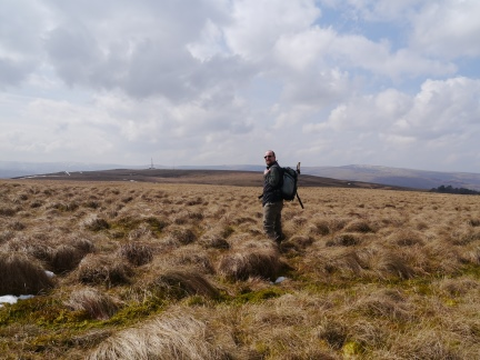 Heading across the tussocks to Newshield Moss