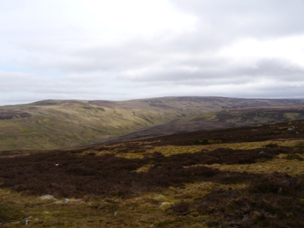 Looking back at Round Hill from above Garrigill