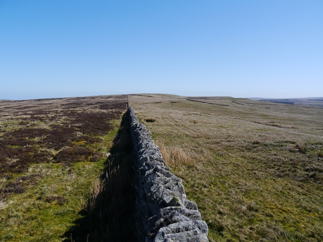 Looking along the wall across Ayle Common to Tarn Rigg