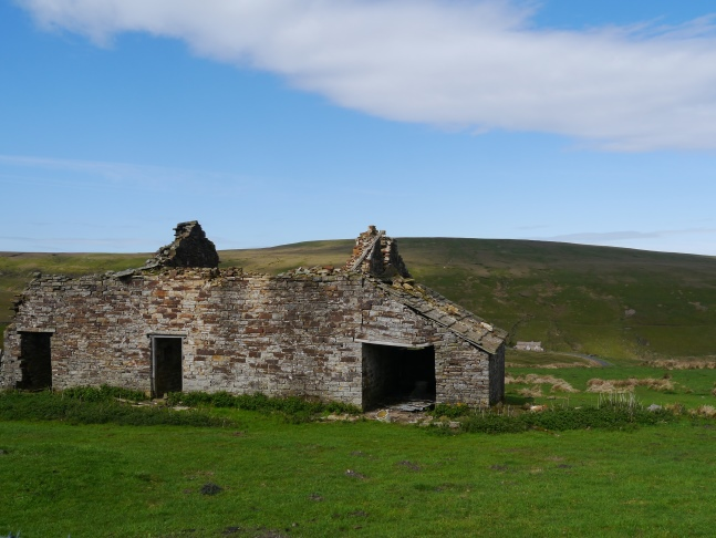 The Dodd from one of the ruined farms on Carrshield Moor