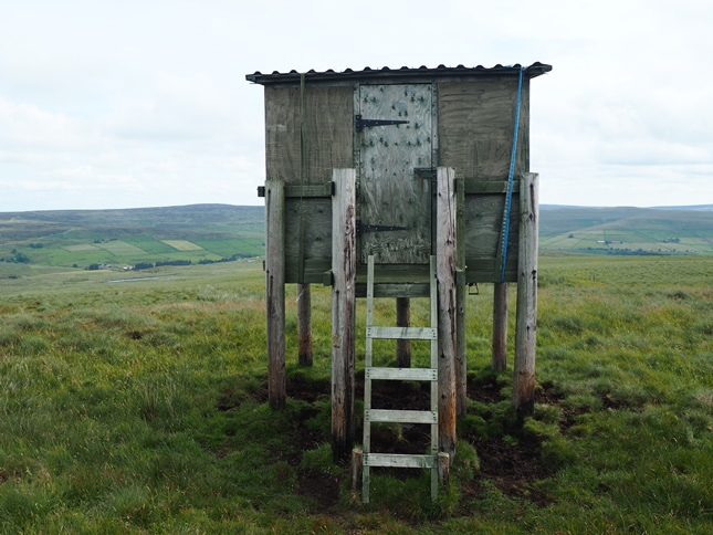 The hut on stilts near the top of Windy Hill