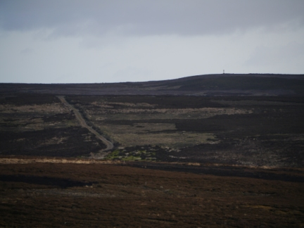 Looking across Spaunton Moor to Ana Cross on the skyline