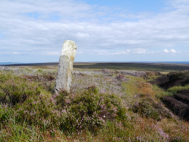 One of a series of boundary stones on Danby High Moor