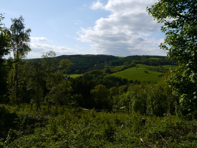 Looking across the small valley of Cockerdale
