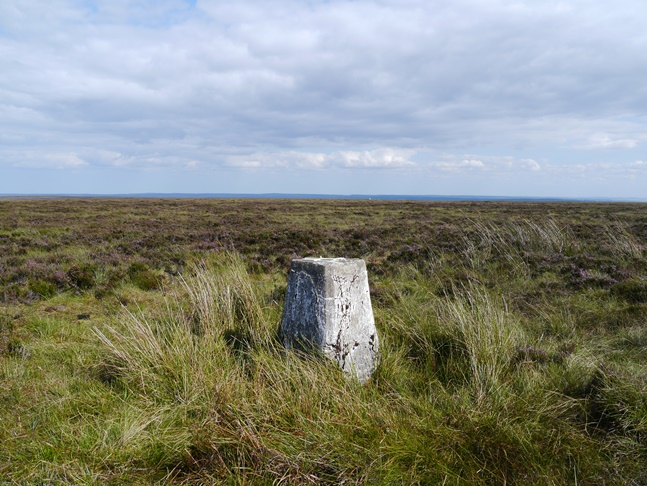 The trig point marking the highest point on Danby High Moor