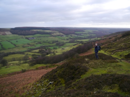 Looking down into Rosedale
