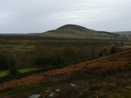 Looking across Ladhill Gill to Easterside Hill