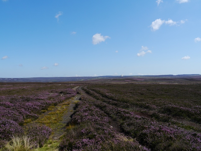 Looking east towards Fylingdales Moor