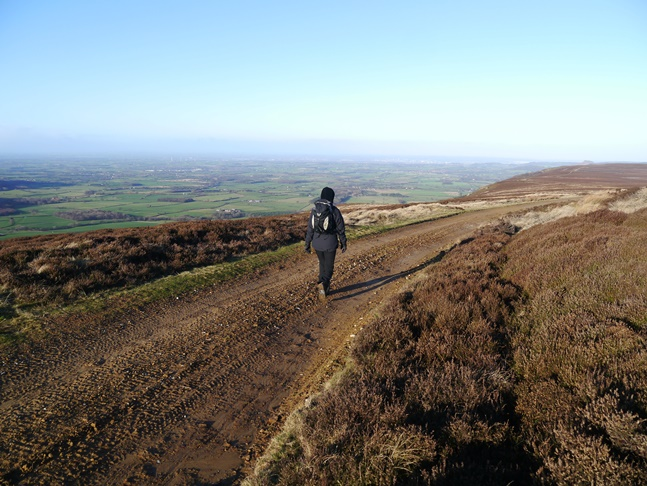 Lisa following the Cleveland Way north above Greenhow Bank