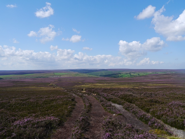 Looking west over Howl Moor towards Wheeldale Moor