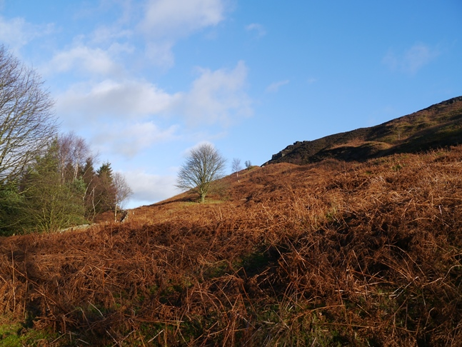 Looking back up towards Ingleby Bank